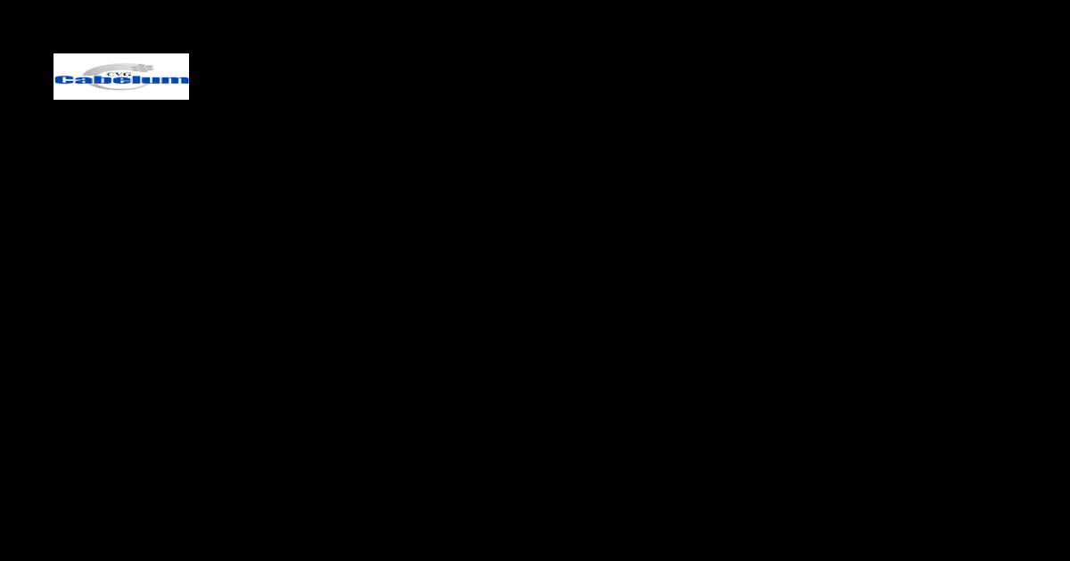 Radiador de aceite de Reemplazo Encendido//Apagado Interruptor 10T 100//55 16A 250VAC Negro