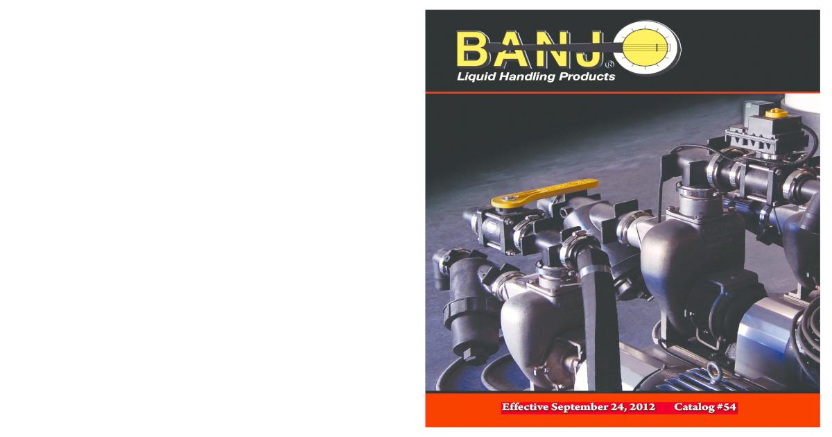 Banjo PLUG200 Polypropylene Pipe Fitting 2 NPT Male 2 NPT Male Banjo Corporation Plug Schedule 80
